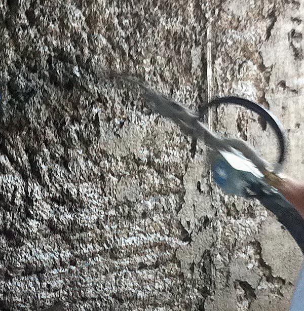 restauracion-estructural-mamposterias-mx-rw-l3-ruregold.com